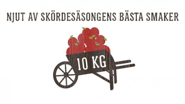 4_slide_swe_10kg